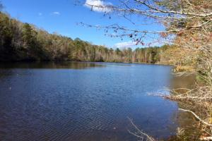 Harris County Hunting Property with Lake  in Harris, GA (3 of 27)