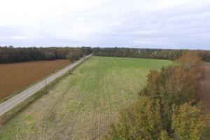 Fourth Street Farming Tract - Darlington County SC