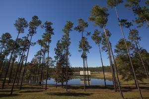 Dogwood Branch Lodge and Lake Retreat in Baldwin, AL (6 of 67)