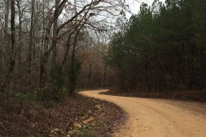 Westover Rock School Road Timber Tract - Shelby County AL