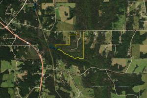 Fort Payne Yellow Creek Tract - DeKalb County AL
