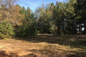 Houston County Residential Development Property - Houston County GA
