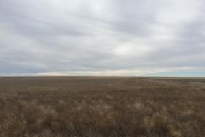 Southern Colorado Farm Ground For Sale  - Kiowa County CO