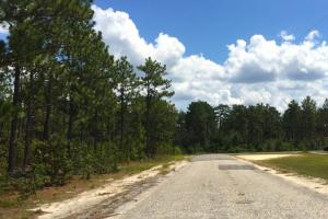 Elk Lodge Court Commercial Acreage - Kershaw County SC