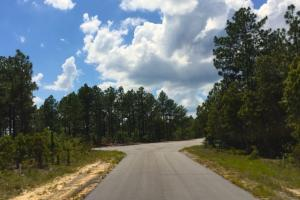 Accessible US-1 Commercial Acreage in Kershaw, SC (10 of 10)