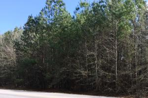 Hwy 29 Possible Residential Property in Perry, MS (2 of 5)