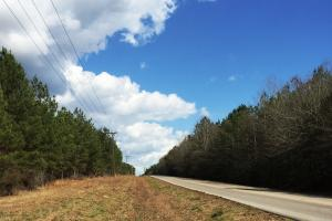 Hwy 29 Possible Residential Property - Perry County MS