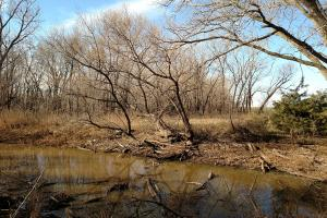 Pretty Prairie Income Property with Great Hunting - Reno County KS