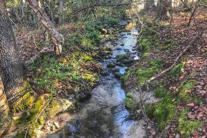 Mill Creek Tract - Caldwell County NC