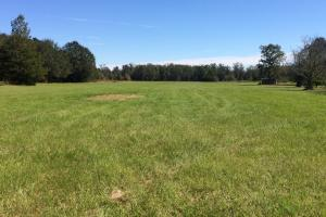 Hwy 17 Reform Homesite - Pickens County AL