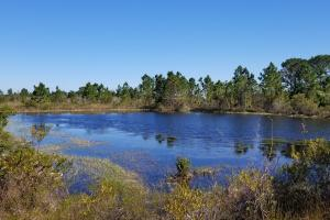 Charlotte County Florida Country Living - Charlotte County FL