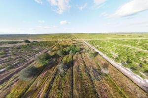 Orange Grove 10 Acres Charlotte County - Charlotte County FL