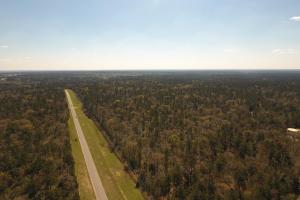 ACREAGE RESIDENTIAL DEVELOPMENT - ADJOINS NATIONAL FOREST in Walker, TX (17 of 31)