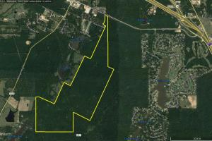 ACREAGE RESIDENTIAL DEVELOPMENT - ADJOINS NATIONAL FOREST in Walker, TX (7 of 31)