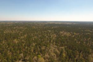 ACREAGE RESIDENTIAL DEVELOPMENT - ADJOINS NATIONAL FOREST in Walker, TX (26 of 31)