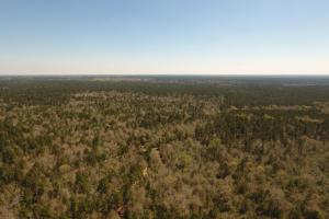ACREAGE RESIDENTIAL DEVELOPMENT - ADJOINS NATIONAL FOREST in Walker, TX (31 of 31)