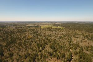 ACREAGE RESIDENTIAL DEVELOPMENT - ADJOINS NATIONAL FOREST in Walker, TX (30 of 31)