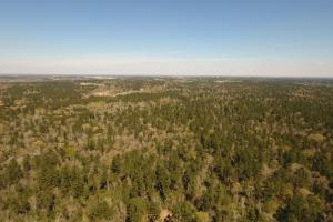 ACREAGE RESIDENTIAL DEVELOPMENT - ADJOINS NATIONAL FOREST in Walker, TX (24 of 31)