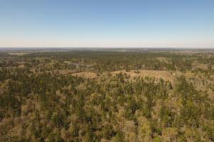 ACREAGE RESIDENTIAL DEVELOPMENT - ADJOINS NATIONAL FOREST in Walker, TX (25 of 31)