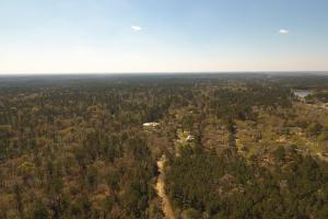 ACREAGE RESIDENTIAL DEVELOPMENT - ADJOINS NATIONAL FOREST in Walker, TX (18 of 31)