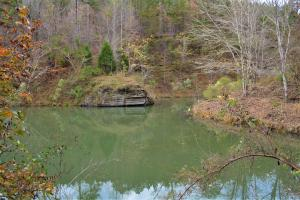 Blackwater Creek Recreation and Timber Investment in Winston, AL (9 of 13)