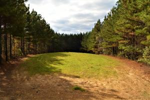 Blackwater Creek Recreation and Timber Investment