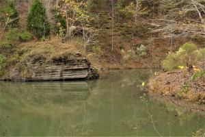 Blackwater Creek Recreation and Timber Investment in Winston, AL (10 of 13)