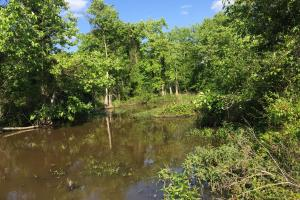 Bogue Chitto Creek Hunting Paradise in Neshoba, MS (22 of 22)