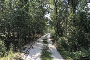 Riverfront Hunting Land and Poultry Farm Opportunity - Sampson County NC