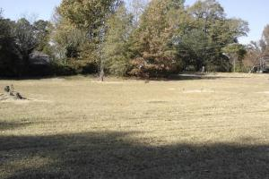 8 ac. Commercial and Residential Property in Winona, MS  - Montgomery County MS