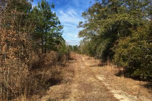Recreational Property with Home Site - Barnwell County SC