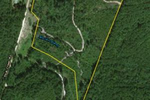 McClain Branch Hunting, Recreation, and Timber Tract