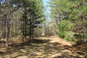 184 Acres in Attala County - Attala County MS