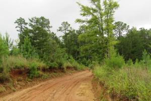 Secluded Hunting & Recreational Tract in Attala, MS (11 of 18)