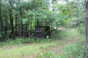 Secluded Hunting & Recreational Tract - Attala County MS