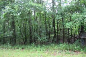 Secluded Hunting & Recreational Tract in Attala, MS (17 of 18)