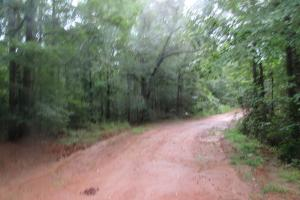 Secluded Hunting & Recreational Tract in Attala, MS (4 of 18)