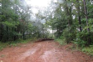 Secluded Hunting & Recreational Tract in Attala, MS (13 of 18)
