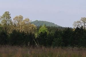 40+/- Acre Ouachita Mountain Hunting & Creek SEALED BID in Perry, AR (36 of 67)
