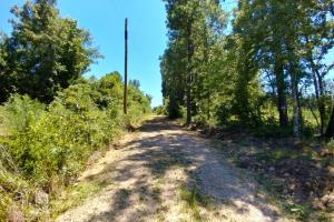 40+/- Acre Ouachita Mountain Hunting & Creek SEALED BID in Perry, AR (23 of 67)
