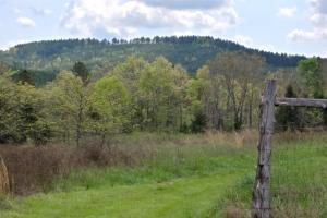 40+/- Acre Ouachita Mountain Hunting & Creek SEALED BID in Perry, AR (38 of 67)