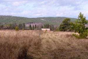 40+/- Acre Ouachita Mountain Hunting & Creek SEALED BID in Perry, AR (2 of 67)
