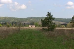 40+/- Acre Ouachita Mountain Hunting & Creek SEALED BID in Perry, AR (33 of 67)
