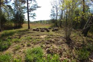 40+/- Acre Ouachita Mountain Hunting & Creek SEALED BID in Perry, AR (48 of 67)