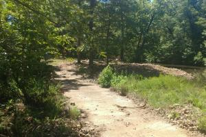 40+/- Acre Ouachita Mountain Hunting & Creek SEALED BID in Perry, AR (18 of 67)