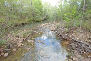 40+/- Acre Ouachita Mountain Hunting & Creek SEALED BID in Perry, AR (58 of 67)