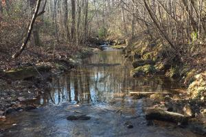Sand Rock Wolf Creek Recreational Tract - DeKalb County AL
