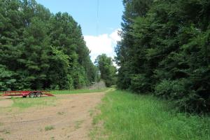 Fantastic 765 acre Hunting & Recreational Property on the Natchez Trace