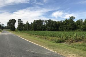 McKoy Road Lot #3 - Bladen County NC