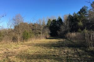 Lake Russell Frontage Property - Abbeville County SC